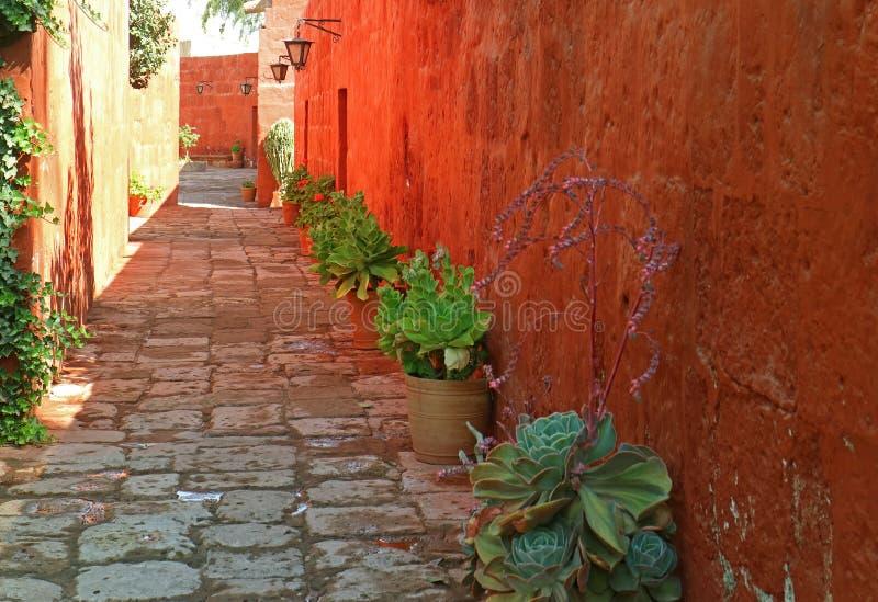 Brukowiec aleja wzdłuż pomarańczowych czerwonego koloru starych budynków w monasterze Santa Catalina, UNESCO światowego dziedzict zdjęcia royalty free