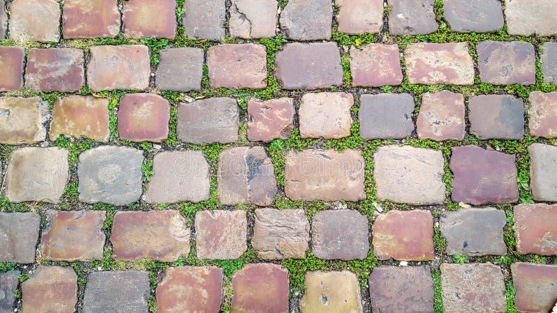 Brukowiec ulica z trawą między kamieniami, teksturą lub tłem, zdjęcie royalty free