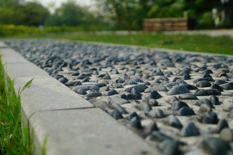 Brukowiec ziemia jako sprawność fizyczna w społeczność parku, zdjęcia royalty free