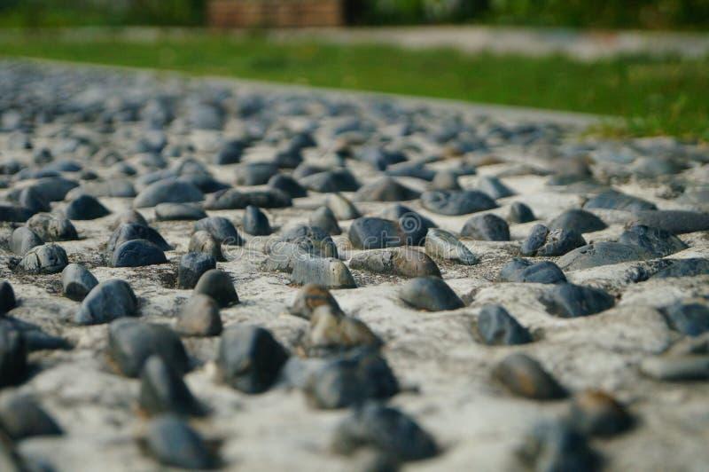 Brukowiec ziemia jako sprawność fizyczna w społeczność parku, fotografia royalty free