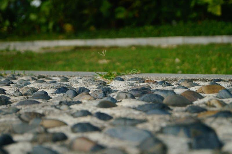 Brukowiec ziemia jako sprawność fizyczna w społeczność parku, zdjęcia stock