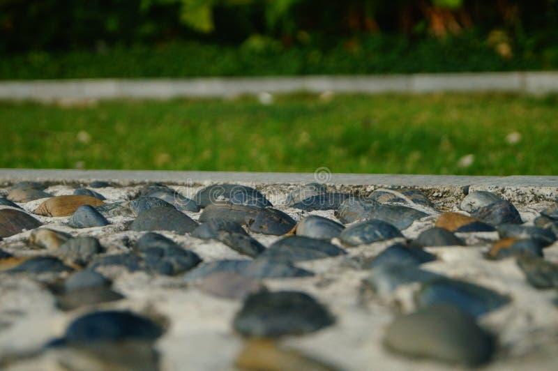 Brukowiec ziemia jako sprawność fizyczna w społeczność parku, fotografia stock