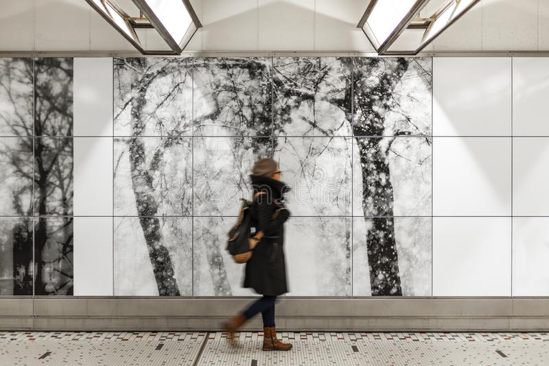 Brukselski ?rodkowy dworzec, Belgia zdjęcia stock