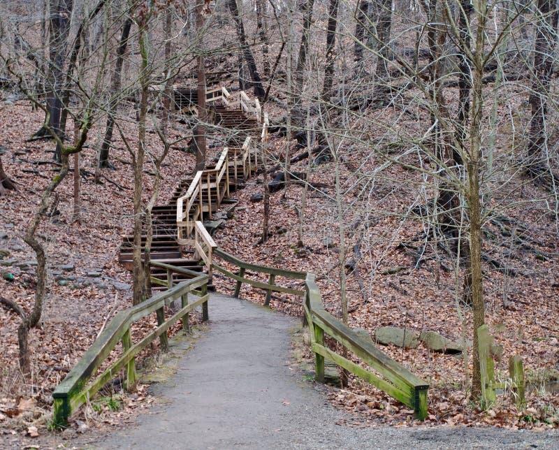 Brukująca ścieżka prowadzi set drewniani kroki przewodzi w górę drewien w Frick parku przez zdjęcie stock