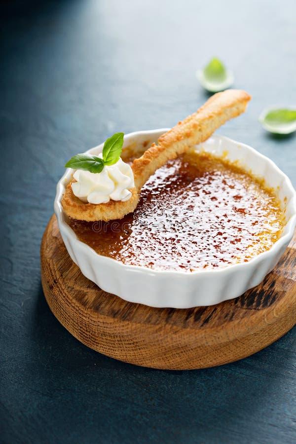 brulee десерт creme стоковое изображение