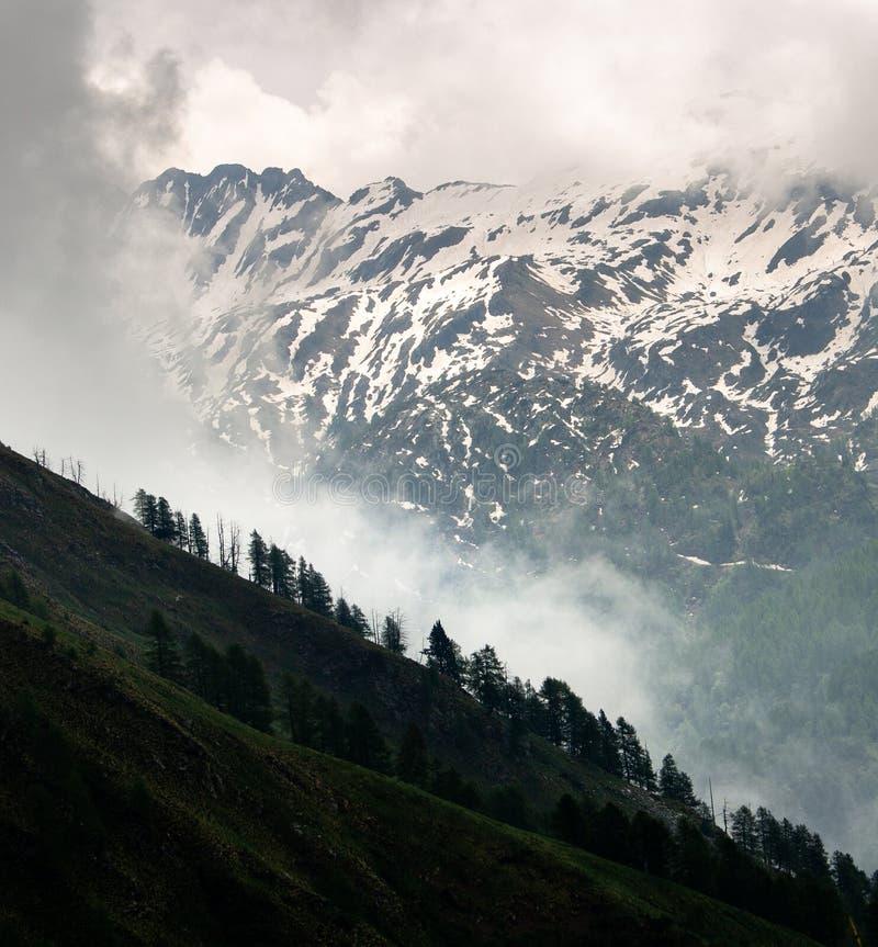 Brume augmentant au-dessus du Treeline dans les montagnes de Milou image stock