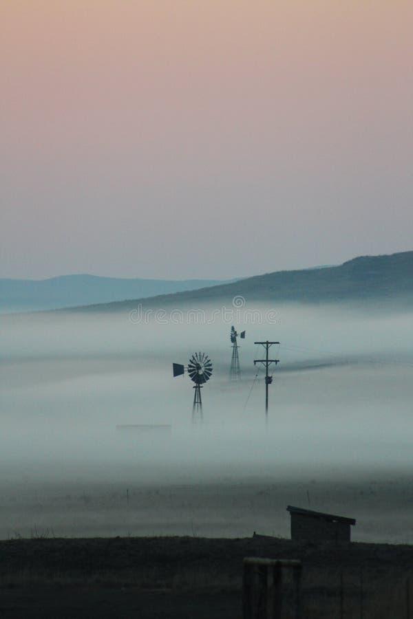 Brume de début de la matinée au-dessus d'une ferme avec des moulins à vent image libre de droits