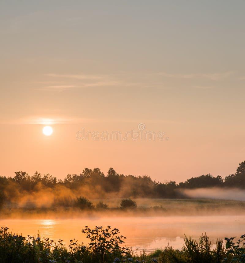 Brume de lever de soleil photo stock