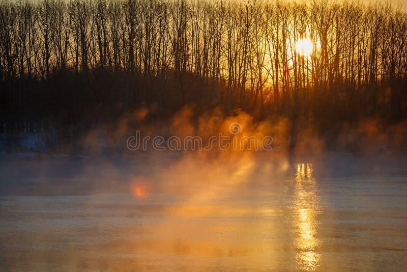 Brume de matin au-dessus de rivière de ressort La Russie centrale, Don photographie stock libre de droits