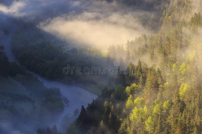 Brume de matin sur la rivière, les rayons du soleil traversant le brouillard, la Géorgie, Tusheti photo libre de droits