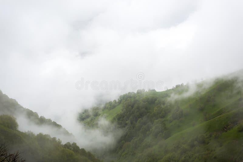Brume de matin sur le passage de montagne Abano 2926 m La G?orgie, Tusheti images stock