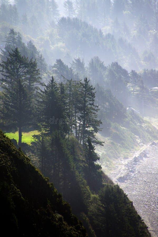 Brume de matin sur les collines côtières image stock