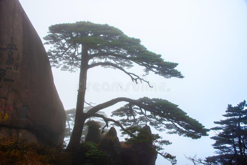 Brume de montagne de Huangshan photo stock
