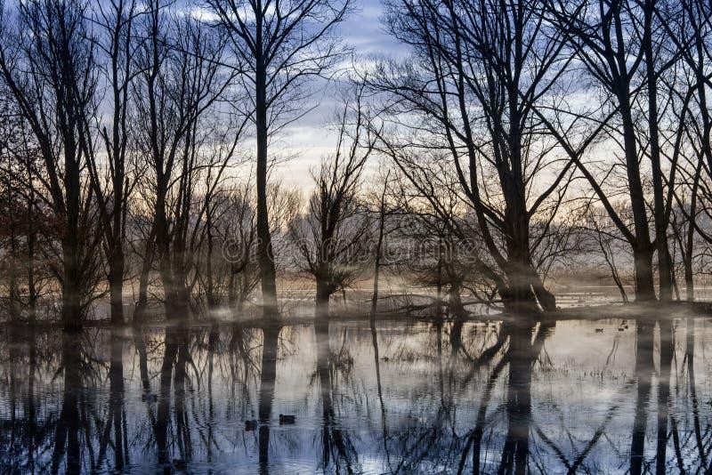 Brume sur l'eau photographie stock