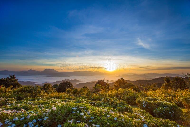 Brume sur le Mountain View, Huai Nam Dang, Chiang Mai, Thaïlande photos libres de droits
