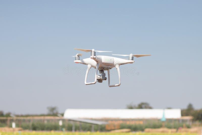 Brummen quadcopter Schwebeflug auf Himmelhintergrund, Brummenkamera, im Bauernhof lizenzfreie stockbilder