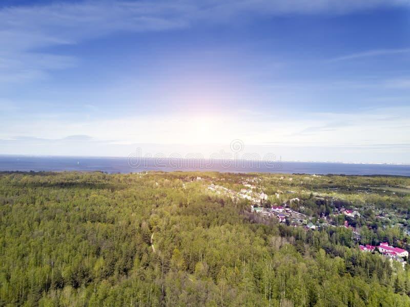 Brummenansicht über das laubwechselnde Holz zu Beginn des Frühlinges, des Finnischen Meerbusens und der Dörfer in der Nachbarscha stockfotos