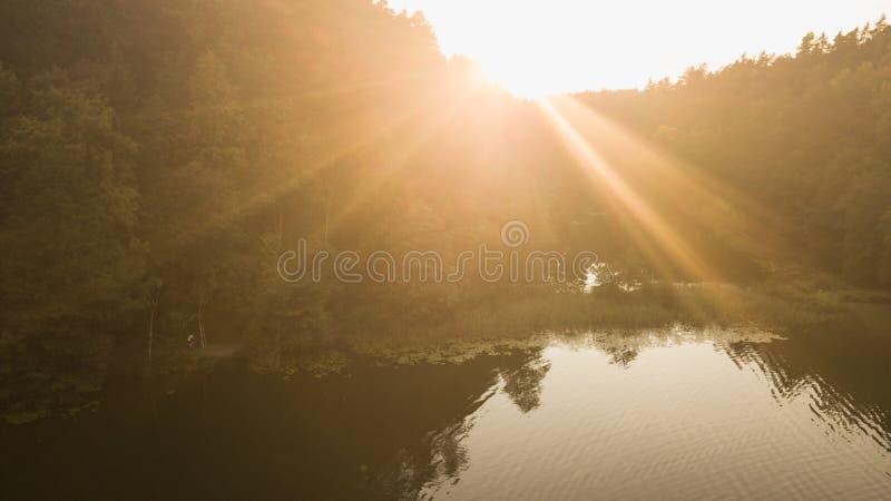 Brummenansicht des Waldes und des Sees lizenzfreie stockfotografie