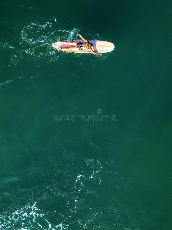 Brummenansicht des weiblichen Surfers allein schaufelnd lizenzfreies stockbild