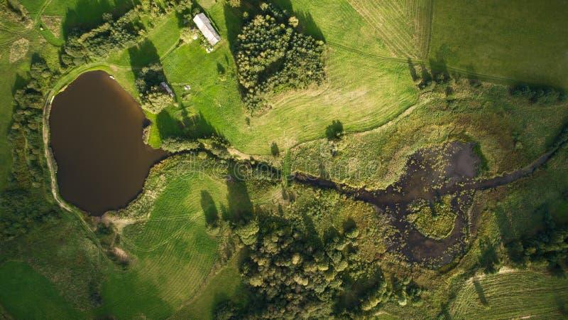 Brummenansicht von Fluss und von Sumpf lizenzfreie stockbilder