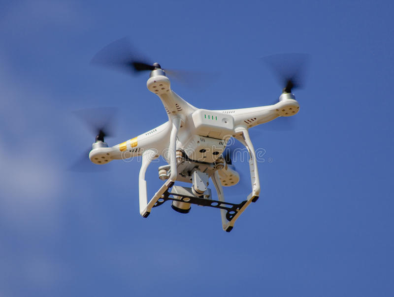 Brummenfliege an der hohen Geschwindigkeit auf einem Himmel stockbilder