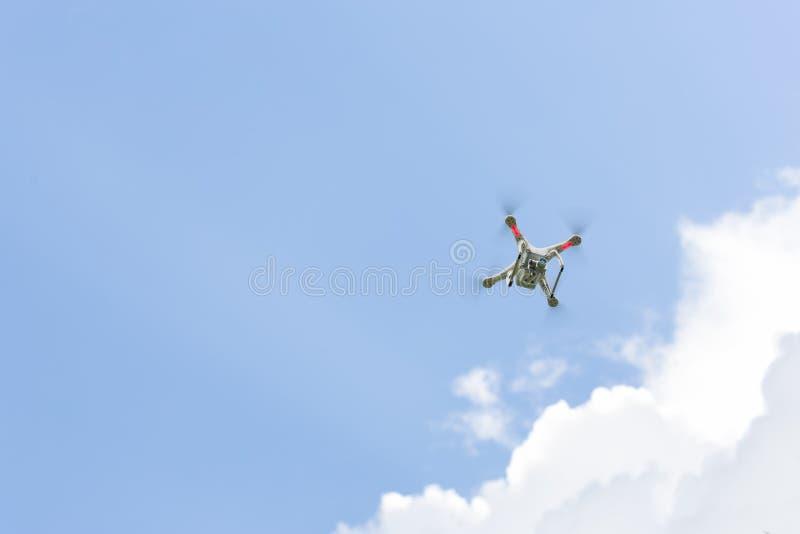 Brummenfliegen bewaffnet mit Kamera stockbild