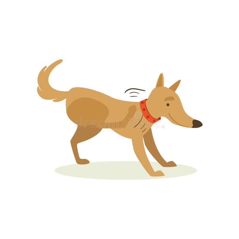 Brun älsklings- hund som skrapar från loppor, djur sinnesrörelsetecknad filmillustration vektor illustrationer