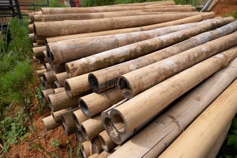Brun bambuhög att förbereda sig för konstruktionsbyggnadsmaterial royaltyfria foton