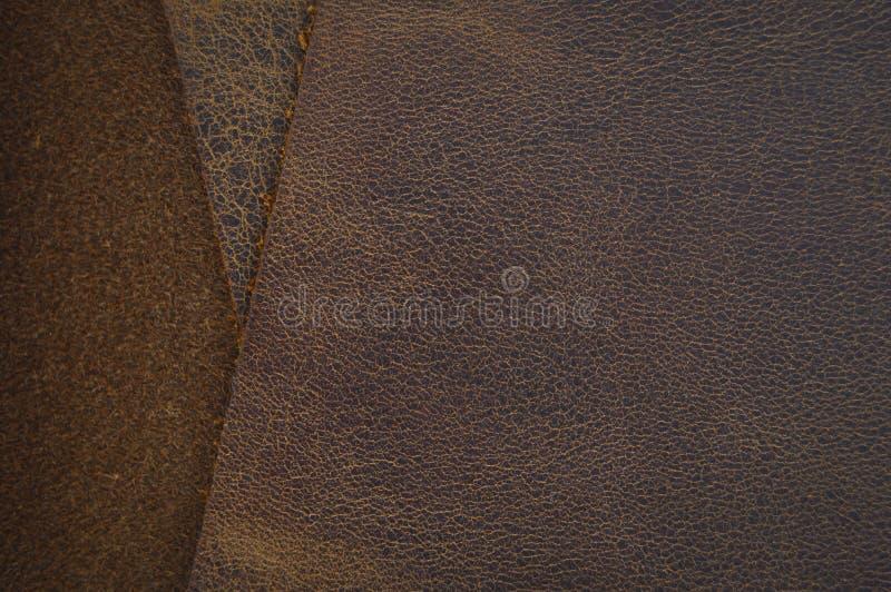 Brun de claret et peau de vache beige, en cuir Armure, plan rapproché photos libres de droits