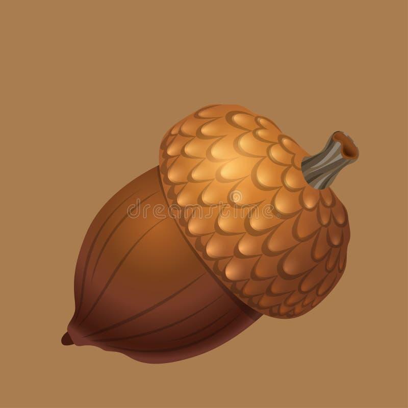 Brun ekollon som isoleras på en brun bakgrund Mutter- och matvektordiagram royaltyfri illustrationer
