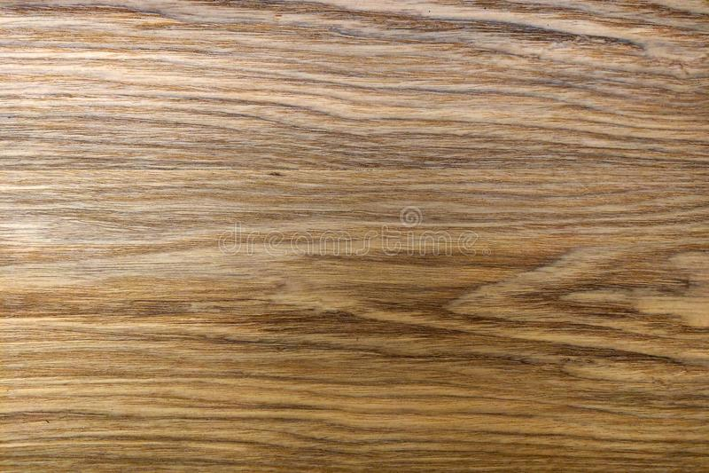 Brun golvtilja, bakgrund för formgivare, trätextur royaltyfri bild