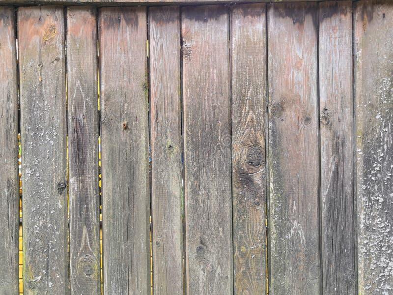 Brun grå träbakgrund - målad gammal träfasad royaltyfri fotografi
