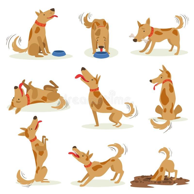 Brun hunduppsättning av normala dagliga aktiviteter royaltyfri illustrationer