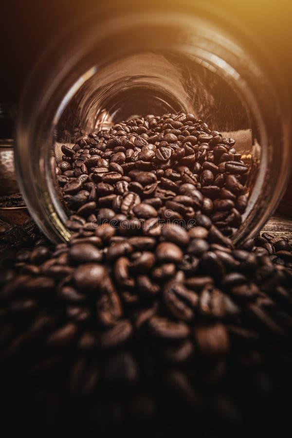 Brun kaffebönor arkivfoto