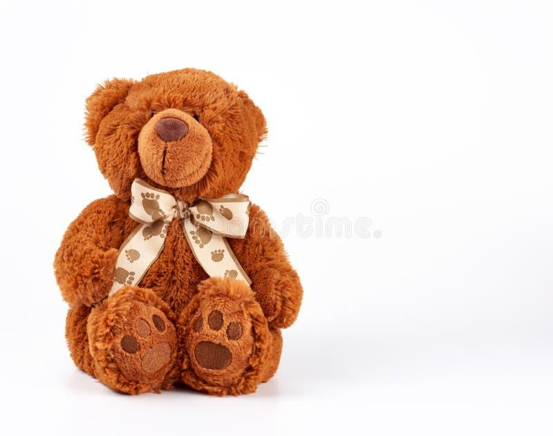 brun teddybjörn med en bog på halsen, vit bakgrund royaltyfria foton