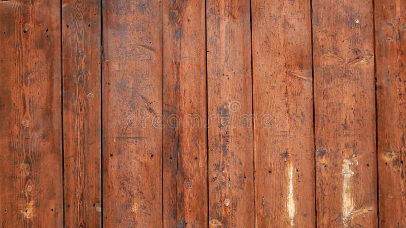 Brun textur av naturligt trä royaltyfri fotografi