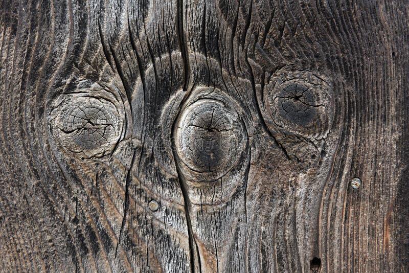 Download Brun träbakgrundstextur fotografering för bildbyråer. Bild av parkett - 78732285