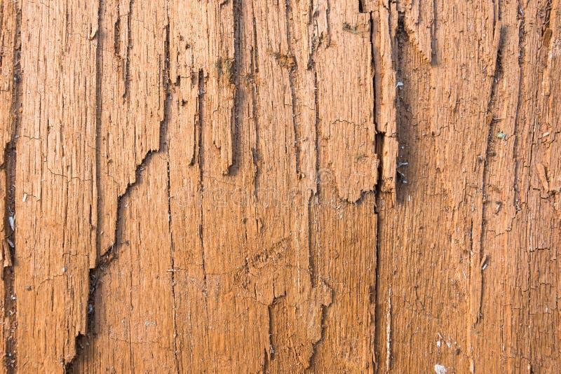 Brun trätextur knäckte, torrt Abstrakt bakgrund, tom mall arkivfoto