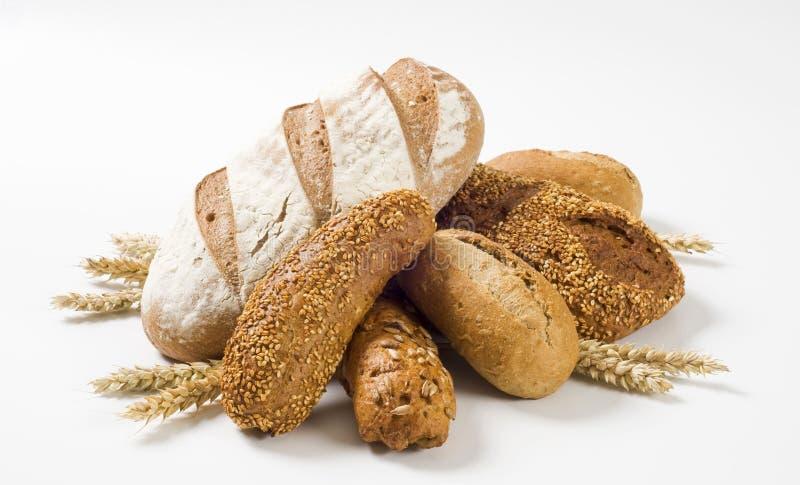 brun variation för bröd arkivbilder