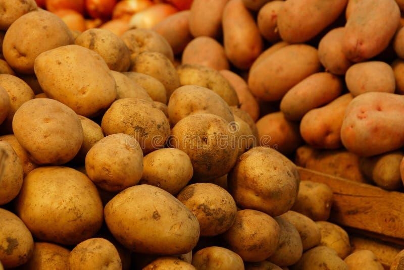 Brun vegetativ naturlig textur av potatisen i en hög arkivbild