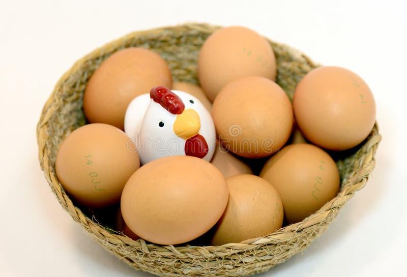 Bruna ägg i korgen på vit arkivbilder