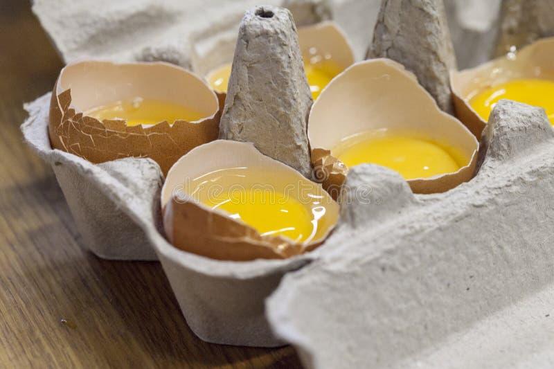 Bruna ägg och äggula på en vit bakgrund royaltyfri foto