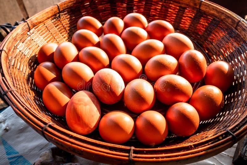 Bruna fega ägg som ordnas i rottingkorg med solljus som skiner på dem royaltyfria bilder