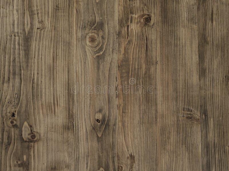 Bruna mjukt träslagfilialer för Tabletop royaltyfria bilder