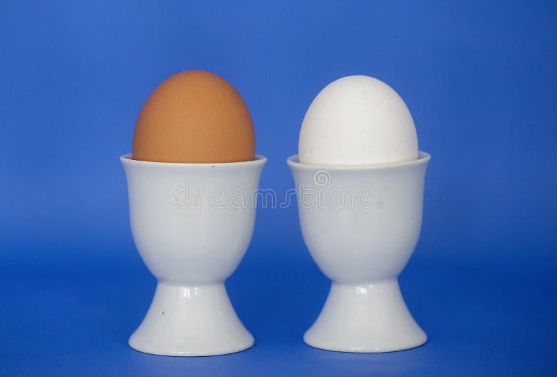 Bruna och vita ägg i äggkoppar arkivbilder