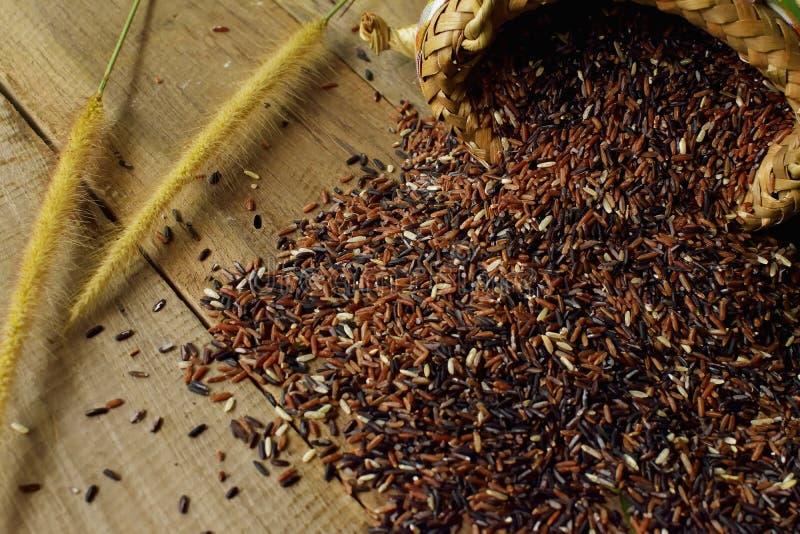 Bruna thailändska ris för ` s arkivbilder