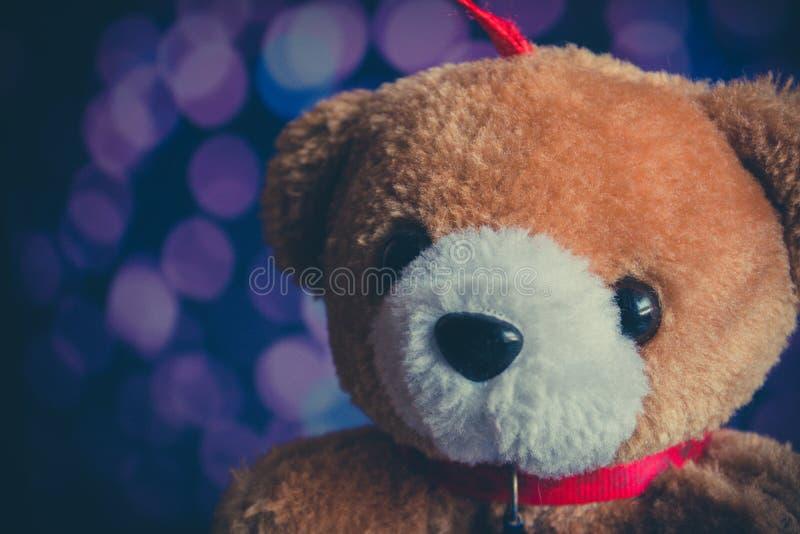 Brunbjörndocka med bokehbakgrund arkivbild