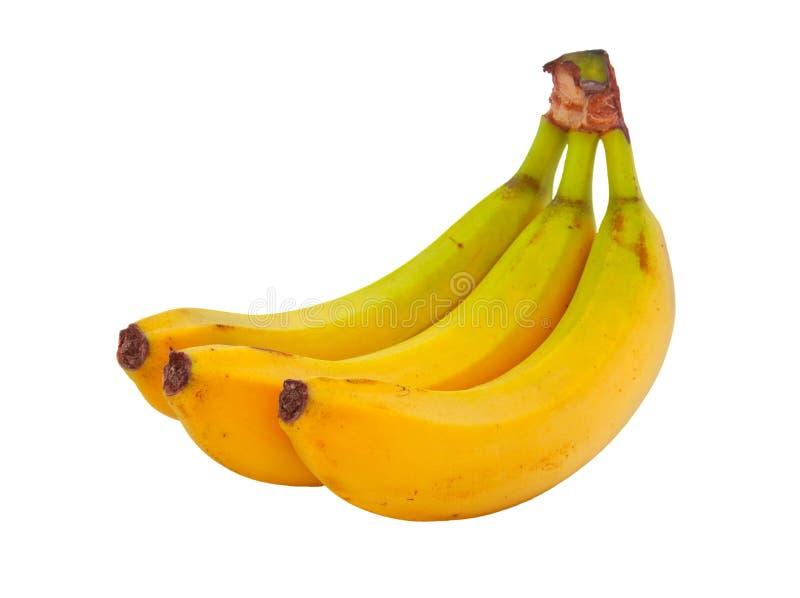 Brunch of banana