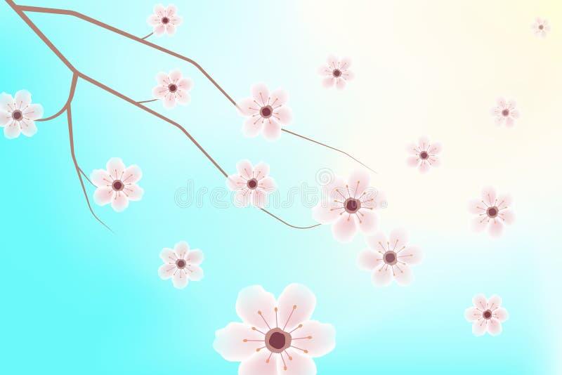Brunch hermoso del árbol de Sakura de las flores de cerezo en fondo del cielo azul ilustración del vector