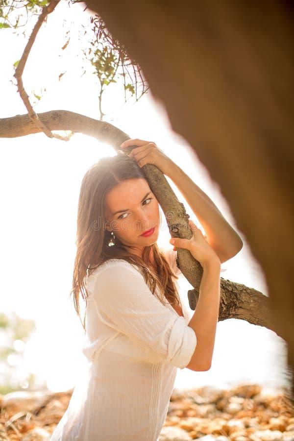 Brune attrayante et jeune sur la plage, parmi les oliviers photos libres de droits